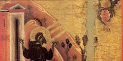 francesco-piccolino
